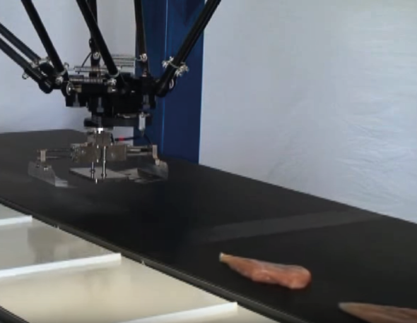 Applied Robotics Meat Gripper in action at Adept Tech